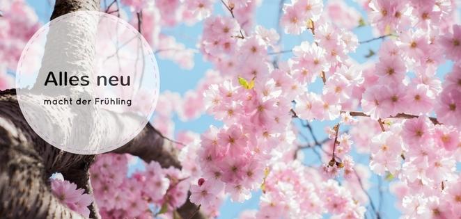 Frühlingsputz Ausmisten Mit Feng Shui