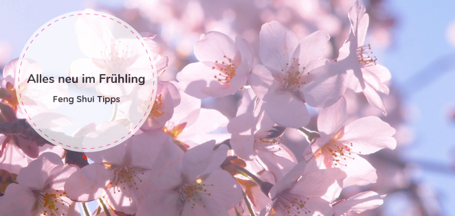 Feng Shui Tipps für den Frühling