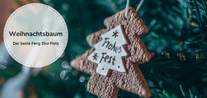 Weihnachtsbaum - bester Platz